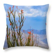 Ocotillo Cactus With Mountains And Sky Throw Pillow