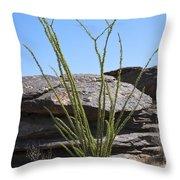 Ocotillo Of Desert Southwest Throw Pillow