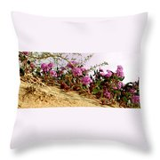 Ocotillo Wilds Throw Pillow