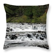 Ocqueoc Throw Pillow