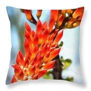 Octillo Flower. Throw Pillow