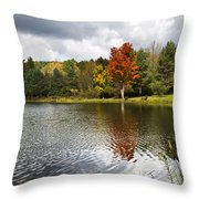 October Brisk Waterscape Throw Pillow