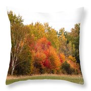 October In Maine 4 Throw Pillow