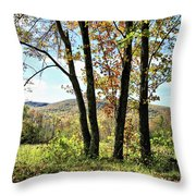 October In Vermont Throw Pillow
