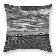 October Patterns Bw Throw Pillow