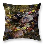 October Puddles Throw Pillow