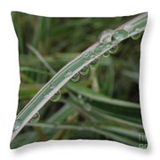 October Rain 3 Throw Pillow