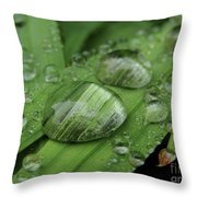 Big Drops Of Rain Throw Pillow