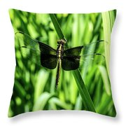 Odanate With Wings Spread Throw Pillow