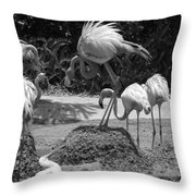 Odd Bird Out In Black And White Throw Pillow
