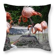 Odd Bird Out Throw Pillow