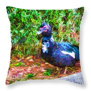 Odd Looking Duck In Swansboro Nc 2 Throw Pillow