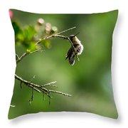 Odd Pose - Hummingbird Throw Pillow