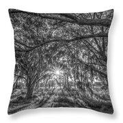 Odessa Sunrise -black And White Throw Pillow