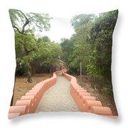 Odigba Throw Pillow