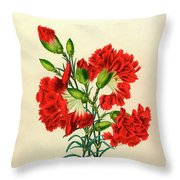 Oeillet Rouge Throw Pillow
