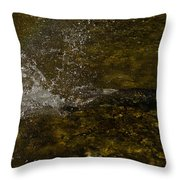 Of Fishes And Rainbows - Wild Salmon Run In The Creek Throw Pillow