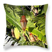 Of Lanterns And Lawn Chairs Throw Pillow