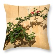 Of Light And Shadow - Bougainvillea On A Timeworn Plaster Wall Throw Pillow