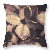 Of Lilac Tales She Tells Throw Pillow