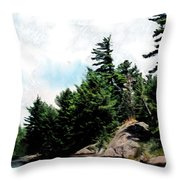 Of Summers Past Throw Pillow