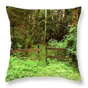Off The Beaten Path Haida Gwaii Bc Throw Pillow
