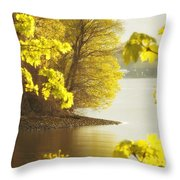 Off The Trail From Beacon Throw Pillow