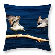 Off You Gull Throw Pillow
