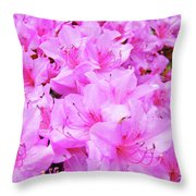 Office Art Azalea Flowers Botanical 31 Azaleas Giclee Art Prints Baslee Troutman Throw Pillow