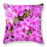 Office Art Azaleas Flower Art Prints 1 Azalea Flowers Giclee Baslee Troutman Throw Pillow