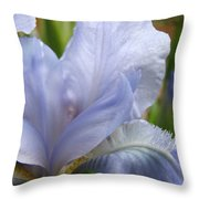 Office Art Blue Iris Flower Floral Giclee Baslee Troutman Throw Pillow