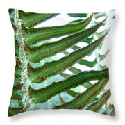 Office Art Ferns Green Forest Fern Giclee Prints Baslee Troutman Throw Pillow