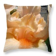 Office Art Irises Flower Orange Iris Flower Giclee Art Prints Baslee Troutman Throw Pillow