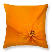 Office Art Poppies Orange Poppy Flowers Giclee Prints Baslee Troutman Throw Pillow