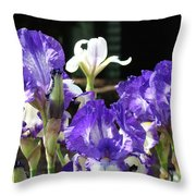 Office Art Prints Iris Flower Botanical Landscape 30 Giclee Prints Baslee Troutman Throw Pillow