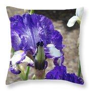 Office Art Prints Irises Flowers 46 Iris Flower Giclee Prints Baslee Troutman Throw Pillow