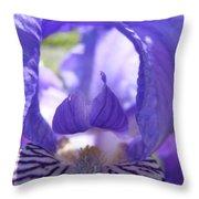 Office Art Prints Irises Purple Iris Flower Giclee Baslee Troutman Throw Pillow