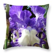 Office Art Prints Irises Purple White Iris Flowers 39 Giclee Prints Baslee Troutman Throw Pillow