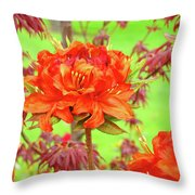 Office Art Prints Orange Azalea Flowers Landscape 13 Giclee Prints Baslee Troutman Throw Pillow