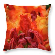 Office Art Prints Orange Azaleas Flowers 9 Giclee Prints Baslee Troutman Throw Pillow