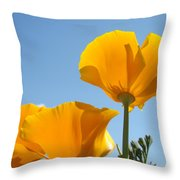 Office Art Prints Poppies Poppy Flowers Blue Skies Giclee Baslee Throw Pillow