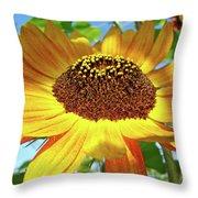 Office Art Prints Sunflowers Giclee Prints Sun Flower Baslee Troutman Throw Pillow