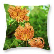 Office Art Prints Tiger Lilies Flowers Nature Giclee Prints Baslee Troutman Throw Pillow