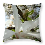 Office Art Prints White Magnolia Flower 6 Giclee Prints Baslee Troutman Throw Pillow
