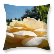 Office Art Rose Landscape Peach Roses Flowers Giclee Baslee Troutman Throw Pillow