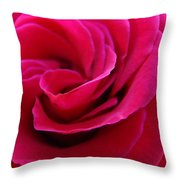 Office Art Rose Spiral Art Pink Roses Flowers Giclee Prints Baslee Troutman Throw Pillow
