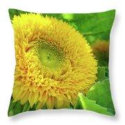 Office Art Sunflower Sun Flowers Giclee Baslee Troutman Throw Pillow