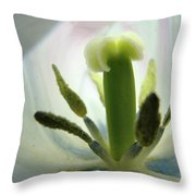 Office Art Tulip Flower Art Prints Tulips Giclee Baslee Troutman Throw Pillow