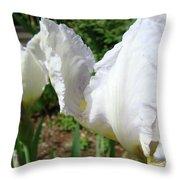 Office Art White Iris Flowers Giclee Art Prints Irises Baslee Troutman Throw Pillow