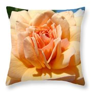 Office Artwork Roses Peach Rose Flower Giclee Baslee Troutman Throw Pillow